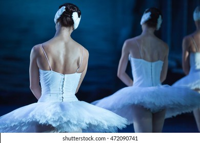 Ballet swan lake. Backs of ballerinas close up,statement. Ballerinas in the movement.
