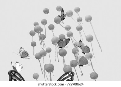 Balloon and butterfly drift in the air.