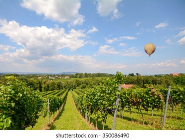Balloon flying over red wine grapes in the vineyard before harvest, Styria Austria Europe