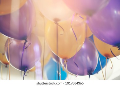 Balloon in Happy birthday party room background with string and ribbon (yellow,blue,violet,purple) helium Ballon floating in celebrate wedding day.Concept of balloon in wedding and birthday party.