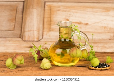 Balloon vine,seeds and oil, herb with heart-shaped seeds and medicinal properties.
