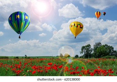 Balloons against the sky and flowering poppies.