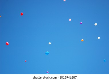 Balloons of all colours have been released and are floating in a clear blur sky. A few white strings attached to the balloons can be seen.