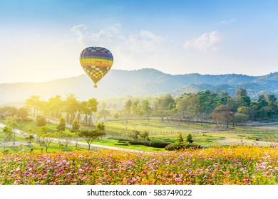 Balloons flying air over blue sky at the Singha Park, Chaing Rai, Thailand.