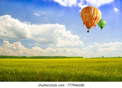 Balloons over rapeseed.