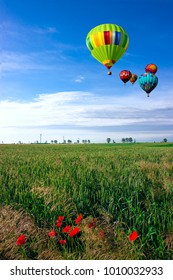 Balloons over the wheat field.