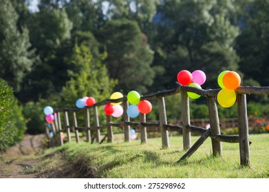 Balloons tied down to a fence in the garden.