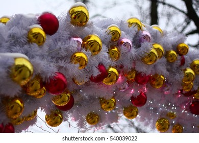 balls on  white branches of spruce