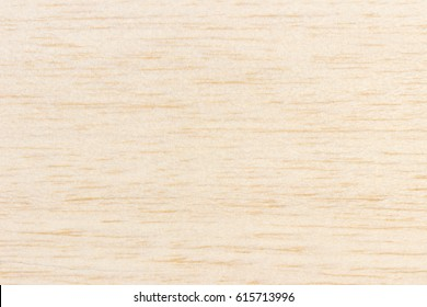 Balsa wood surface texture fragment