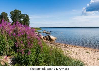 Baltic coast; Lahemaa National Park; Estonia