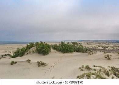 Baltic Dunes from Epha height on the curonian spit. Curonian Lagoon.  Unesco heritage.