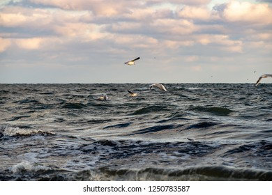 baltic nordic sea