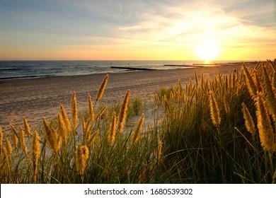 Baltic Sea, dunes on a sandy beach in Kolobrzeg, Poland.