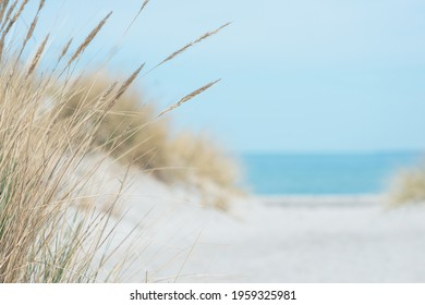 Baltic sea dunes over blue coastline background in Northern Germany