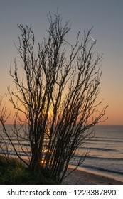 Baltic sea in evening time.