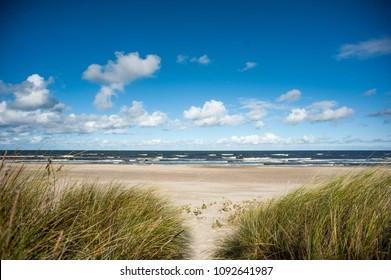 Baltic sea, landscape, seagulls, shore, sun, beach, sea