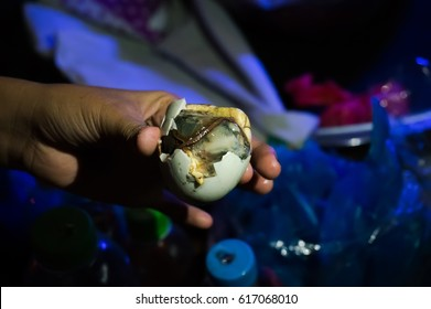 Balut boiled developing duck embryo is a special cuisine in Asia. it's very popular in Philippine, Vietnam, Lao and Cambodia