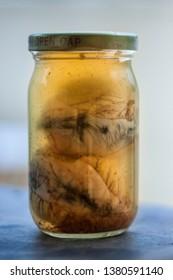 Balut, Fertilized duck eggs in brine