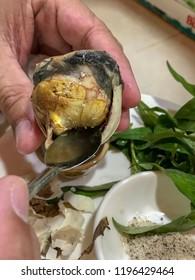 Balut the Vietnamese food
