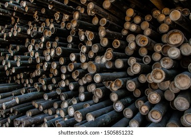 Bamboo abstract background. Pile of bamboo pole. Stack of round timber logs. Large batch of wooden logs for industrial scale or manufacturing. Warehouse of material for furniture factory.