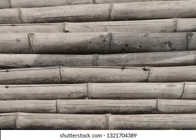 Bamboo background in nature