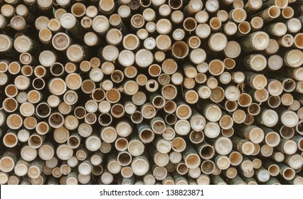 The bamboo background, texture or pattern for design background or other your content.