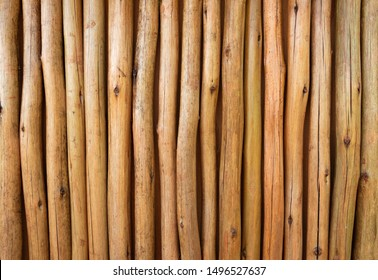 Bamboo background, texture, surface. Close up