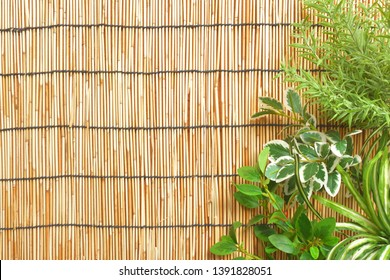 a bamboo  blind. Background material.