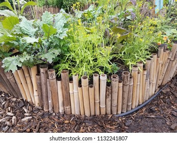 bamboo border and wood chips with green plants