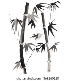 Bamboo branches isolated on a white backgrond, watercolor