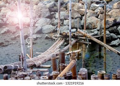 Bamboo bridge, Block the coast, Bamboo wall in mangrove educatio