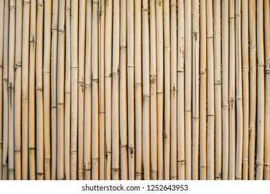 bamboo cane exture