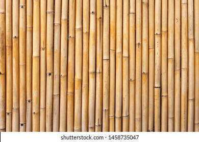 Bamboo cane fence / natural and exotic texture
