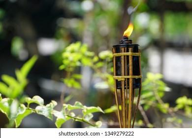 Bamboo citronella torches