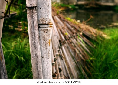 Bamboo fence falling like a dominoes