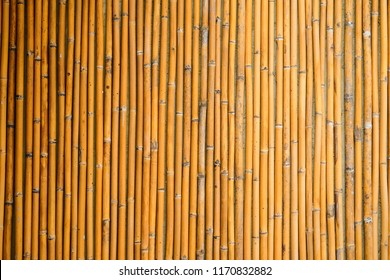 Bamboo fence or wall close up