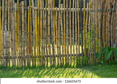 Bamboo fences in rural areas.