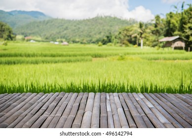 Bamboo floor on natural green grass field & sky background