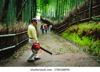 Bamboo forest 'Chikurin' after stormy day . A man is cleaning branches that have fallen on the ground. Arashiyama, Kyoto, Japan. October 1, 2012.