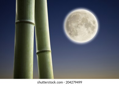 A Bamboo And A Fullmoon