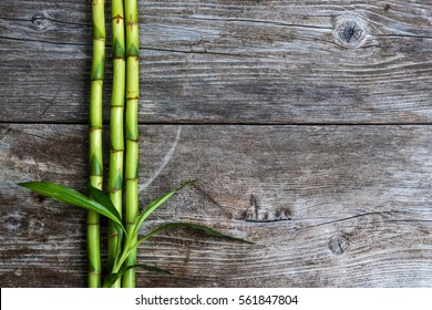 bamboo grove and leaves on the wooden background