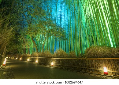 Bamboo grove lit up at night during Arashiyama Hanatouro festival, Kyoto, Japan.