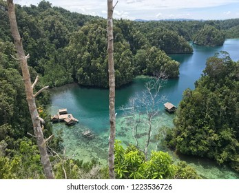 Bamboo Hut in Mangrove, Kabui Bay Raja Ampat, West Papua Indonesia surrounding by clear water beach with many corals and you can climb to the top of the hills and see the beautiful landscape