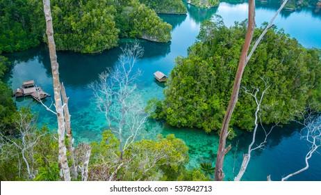 Bamboo Hut in Mangrove near Warikaf Homestay, Kabui Bay and Passage. Gam Island, West Papuan, Raja Ampat, Indonesia