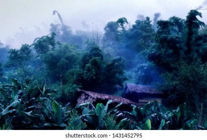 Bamboo Huts in misty Jungel Myanmar