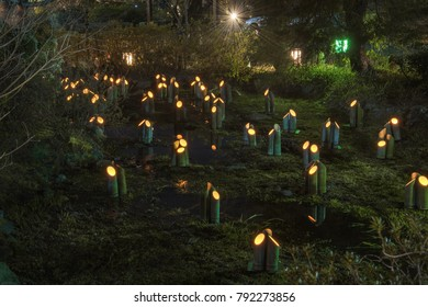 Bamboo lanterns at Higashiyama Hanatouro (Lantern Festival), Kyoto, Japan. Lanterns made of young bamboo are placed on a stream running through Maruyama Park.