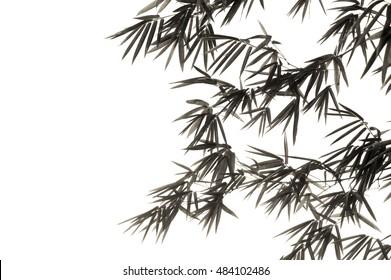 bamboo leaf on black and white tone