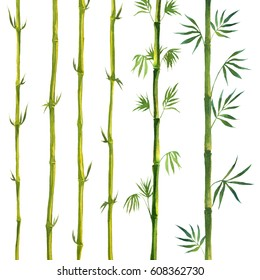 Bamboo leaves and frames. Watercolor illustrations.