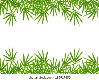 bamboo leaves isolated on white background, clipping path included