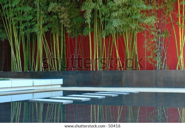 bamboo and man made pond